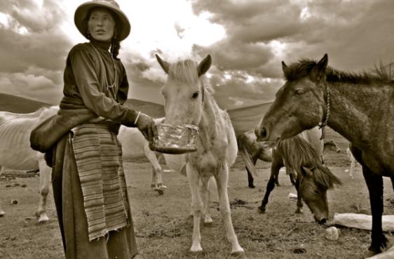 The Faces Along the Tea Horse Road