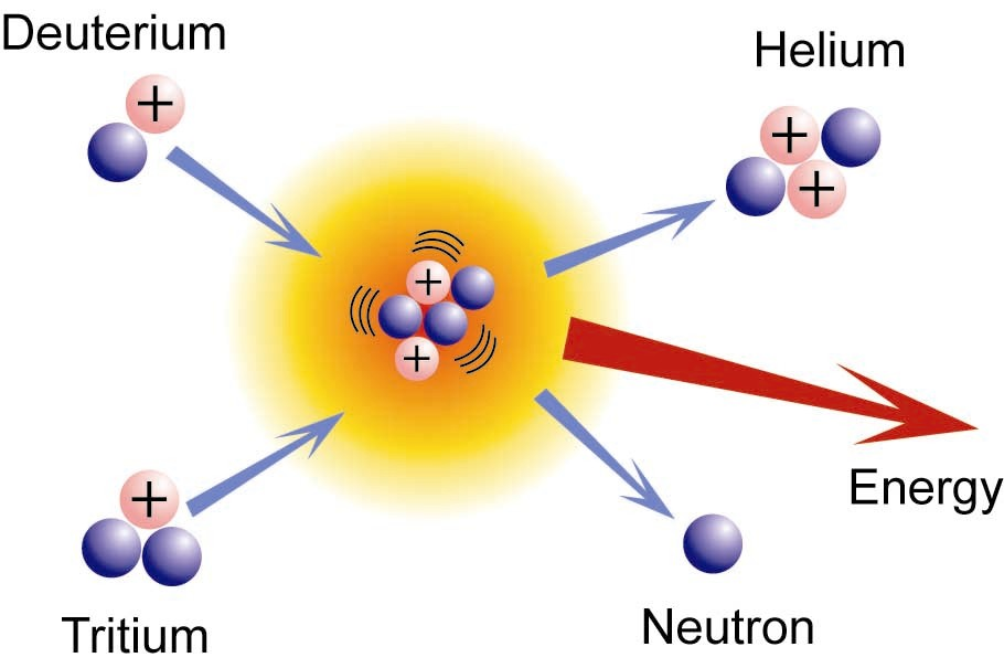 Fusion Diagram