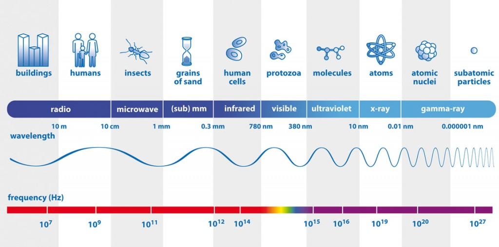 Los colores visibles, infrarrojos, radio, rayos X y rayos gamma son todas las formas de luz y comprenden el espectro electromagnético.  Aquí usted puede comparar sus longitudes de onda con objetos familiares y ver cómo sus frecuencias (número inferior) aumenta con la disminución de la longitud de onda.  Crédito: ESA
