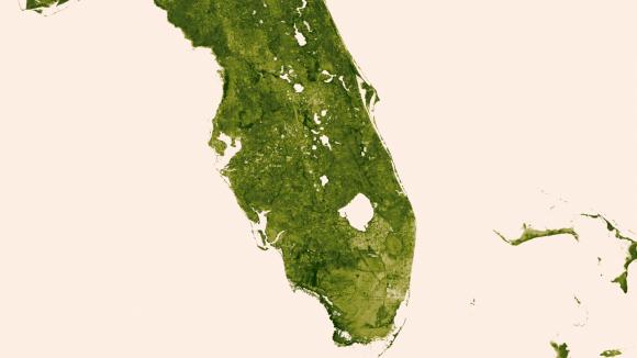 """Los Everglades de Florida 18-24 marzo de 2013.  El """"río de hierba"""" que se extiende al sur del Lago Okeechobee muestra claros signos de su estado modificado con las áreas de la agricultura densa, el crecimiento urbano y las áreas de conservación de agua delimitadas por una serie de cursos de agua que atraviesan el sur de la Florida.  Crédito: NOAA / NASA"""