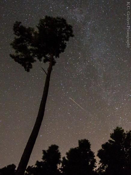 Imagen de la Vía Láctea lluvia de meteoros Perseidas y dispararon en Hampstead, Carolina del Norte en una Canon 7D @ 10m 30s f / 4 ISO 2500.  Crédito y copyright: KC Goshert.
