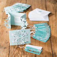 Simply Snowflake Kit