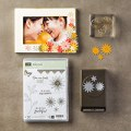 Grateful Bunch Photopolymer Bundle