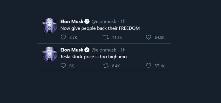 Elon Musk Twitter Meltdown Tanks Tesla (TSLA) Aktie