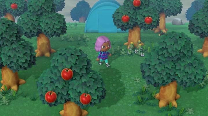 Todos los errores nuevos en julio - Animal Crossing: New Horizons