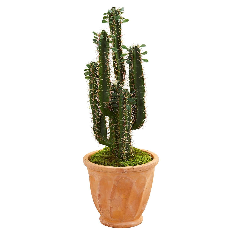 artificial, plant, planter, cactus