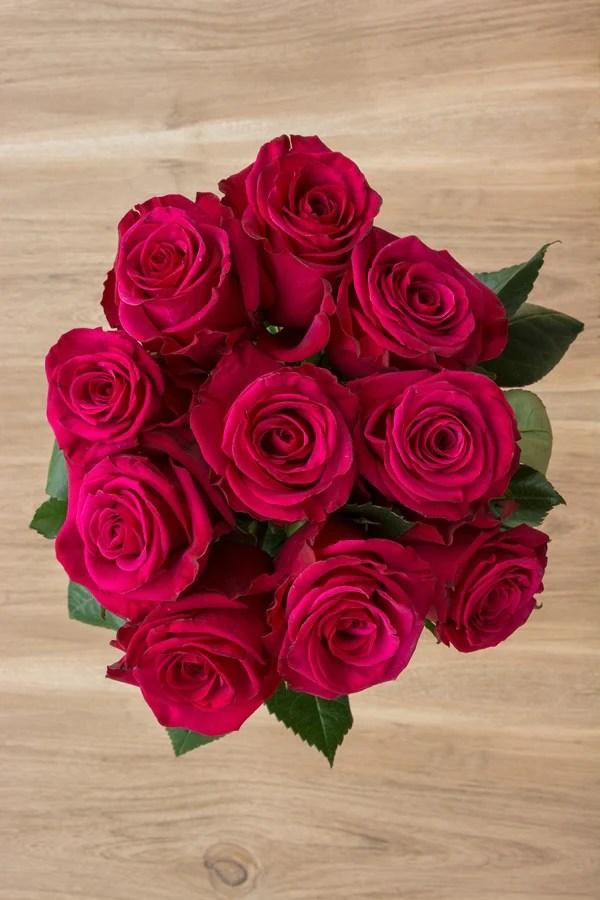 Buy Buy Pink Floyd Pink Flower Roses For Valentine
