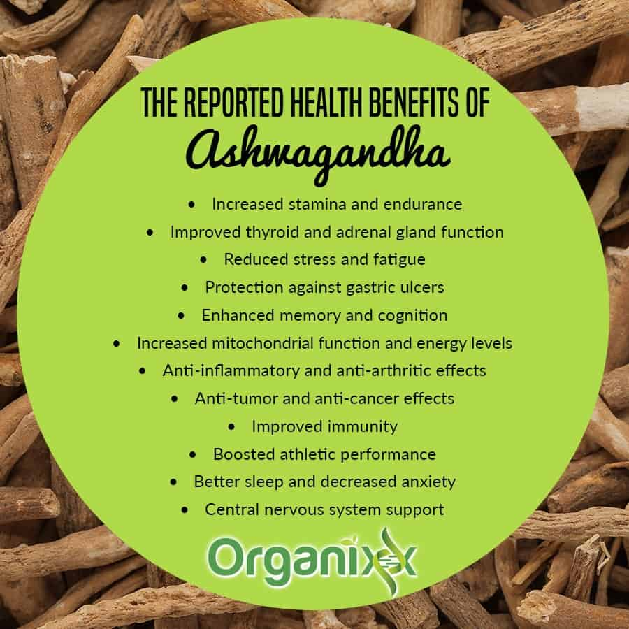 Image Result For What Are The Benefits Of Ginseng Extract