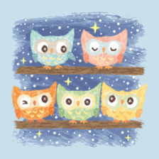 Owl bird Shirts