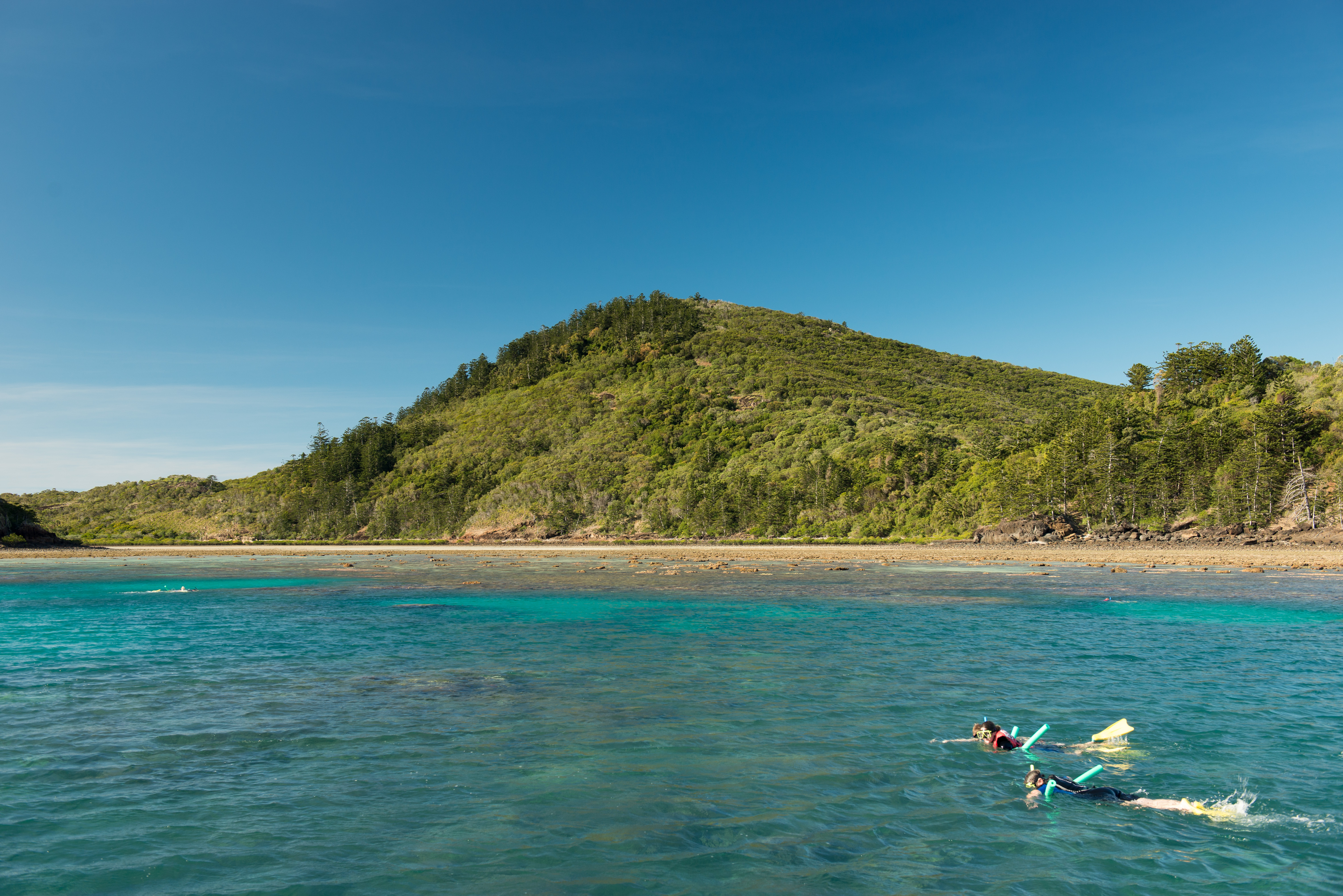 The Best Travel Guide To Hamilton Island