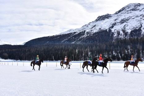 White Turf 2017, St. Moritz