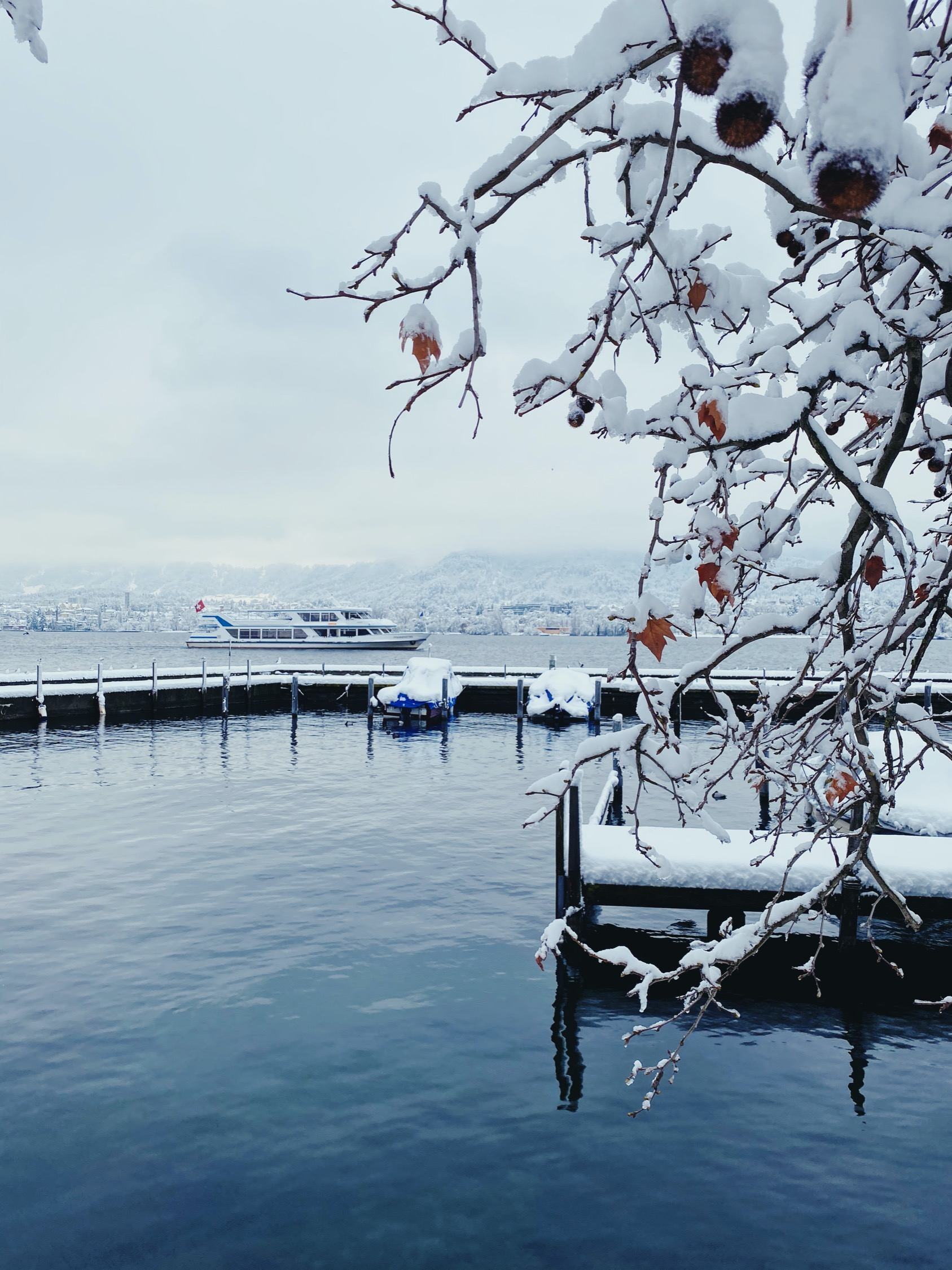 On the shores of Zurich Lake (Seefeld Promenade) during the record snowfall, January 2021