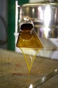oil-press