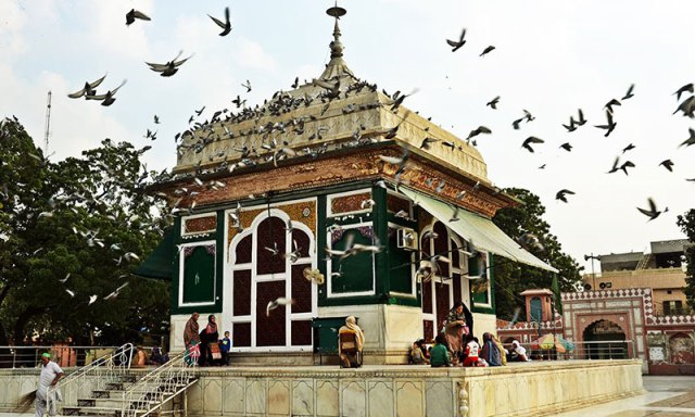 Pigeons are attracted to the serenity of the shrine. Photo by Abdullah Khan.
