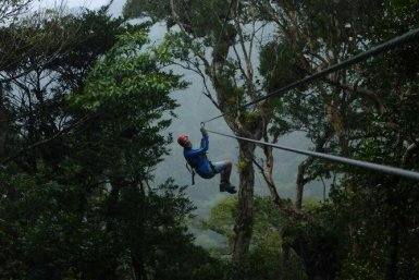 A zipliner passes through the trees and into the misty cloud forest beyond.