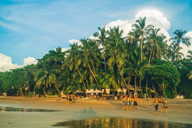 A beachside hangout surrounded by Palm Trees in Tamarindo.