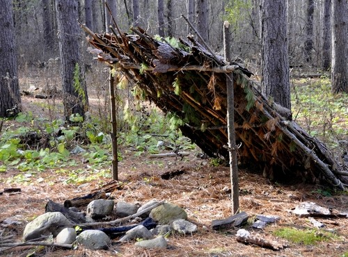 Wilderness Shelter