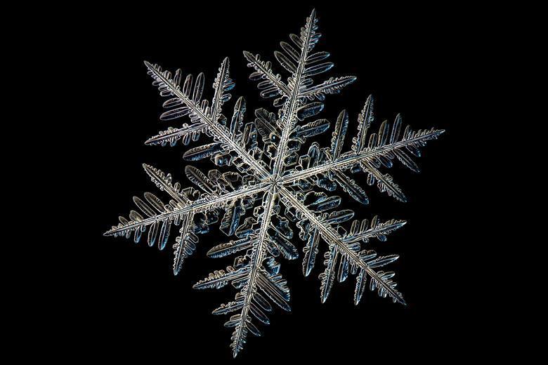 Snowflake Pics