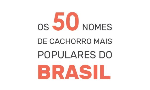 Nomes de cachorro: os 50 nomes mais populares do Brasil
