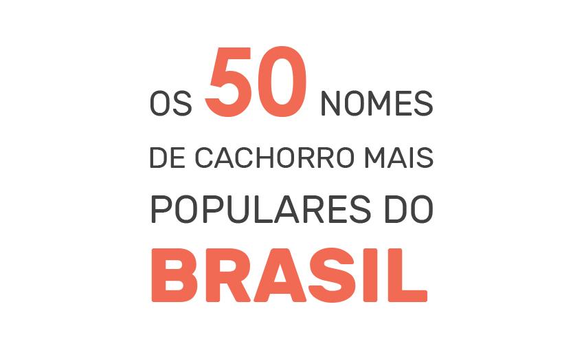 50 nomes de cachorro mais populares do Brasil - Pesquisa exclusiva com 100.000 cães cadastrados na DogHero - Blog DogHero