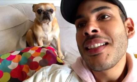 DogHero: Hugo Gloss e Laura estrelam campanha de Carnaval