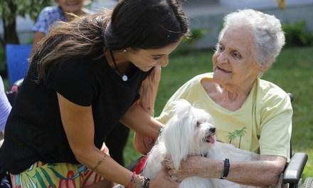 Liga DogHero: cães-anfitriões levam alegria a asilo