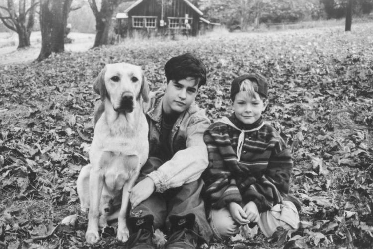 filmes-de-cachorro-3