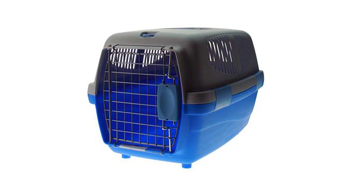 Cachorro a caminho: o que comprar para o peludo que vai chegar - DogHero for dog lovers <3