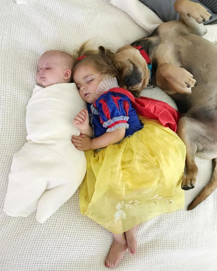 Cães e crianças: 10 perfis que valem a pena seguir! - DogHero for dog lovers <3