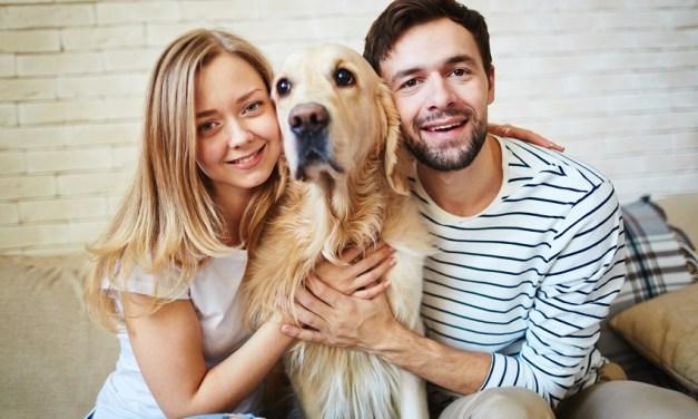 Novidade no app DogHero: Recomendação de Amigos