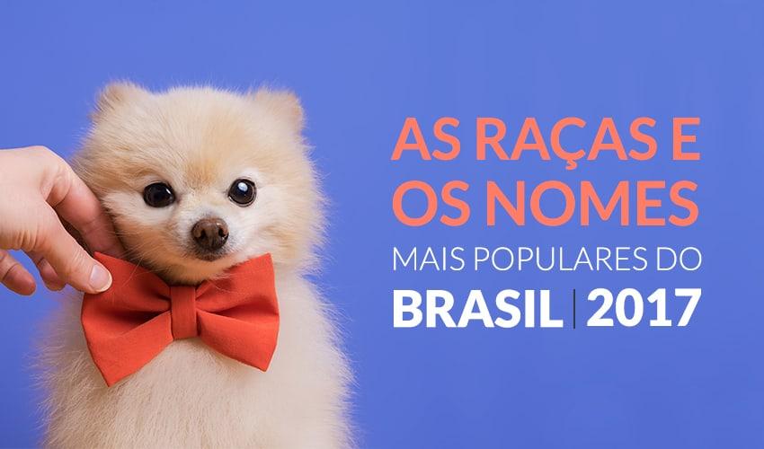 Censo Canino: consulte nomes, raças e mais!