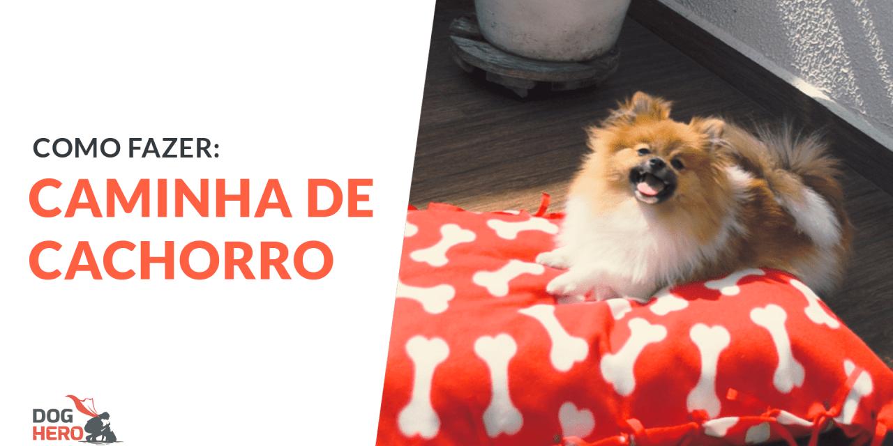 Como fazer caminha de cachorro