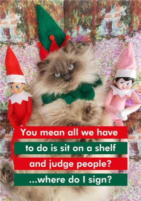 Grumpy Cat Christmas Card Moonpig