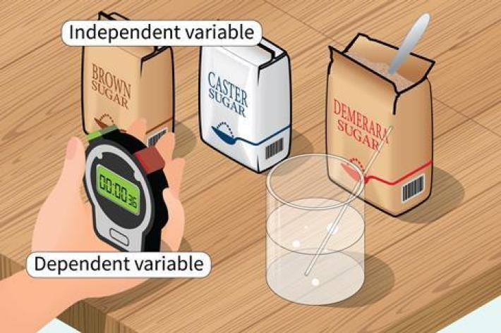 A cartoon of an experiment using a stopwatch to time sugar dissolving in water