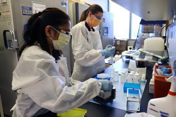 A photo of two scientists working in a lab