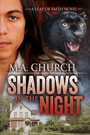 Shadows in the Night (Leap of Faith, #1)