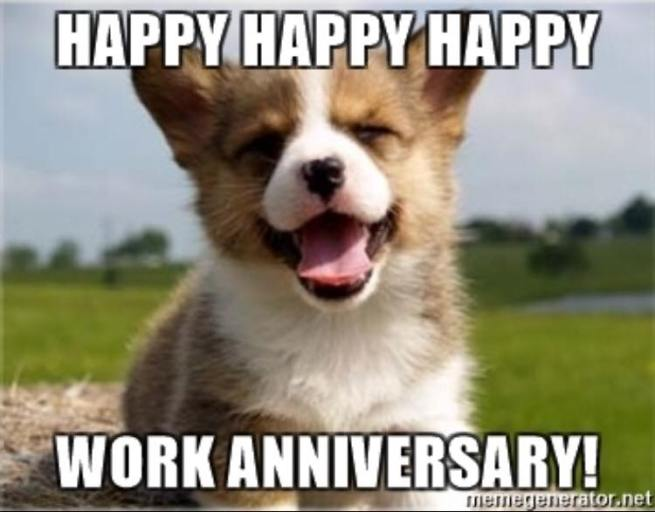 35 Hilarious Work Anniversary Memes to Celebrate Your Career | Fairygodboss