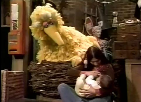 Big Bird Nursing