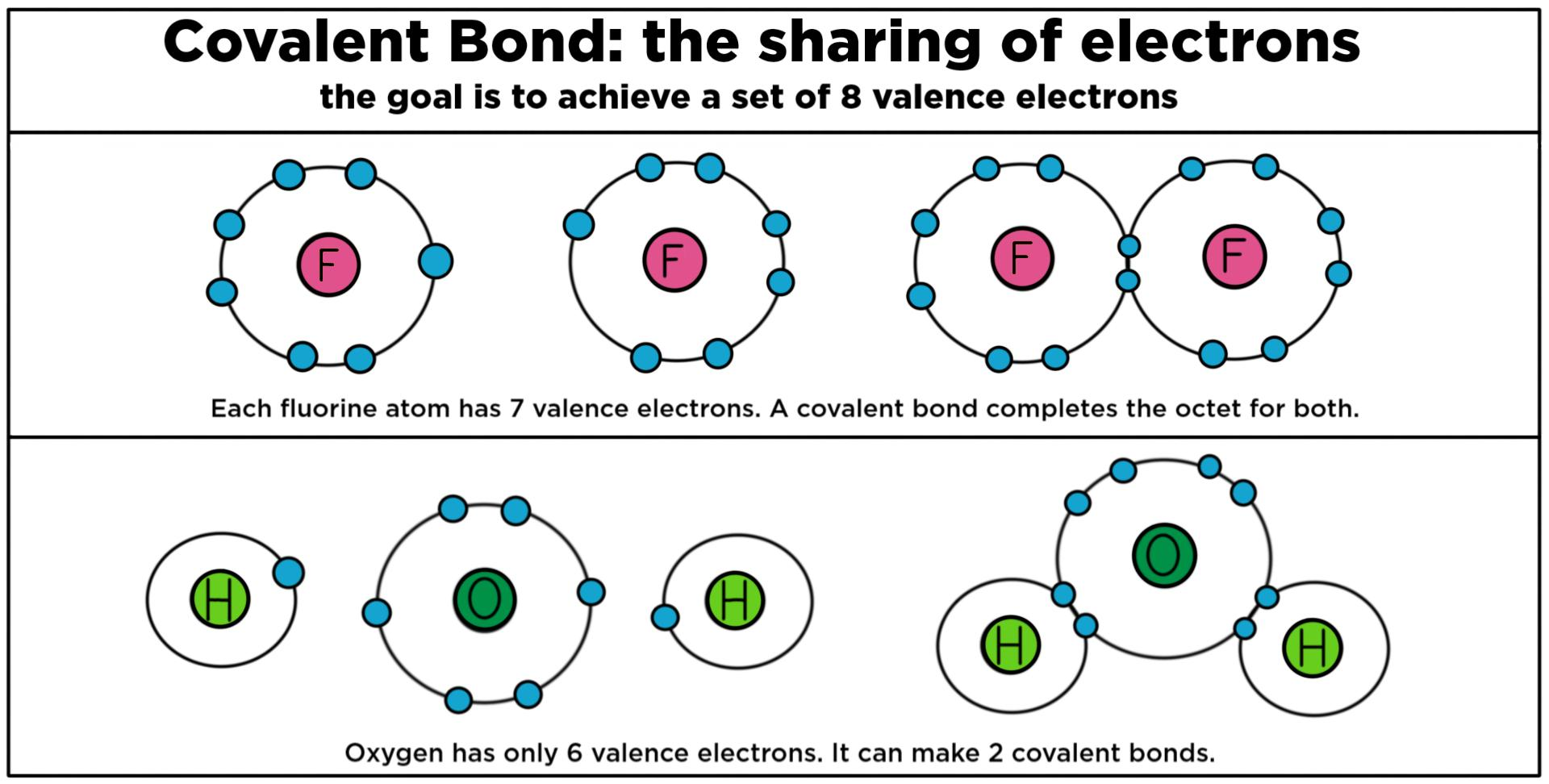 Covalent Bonding Biology Definition Amp Role