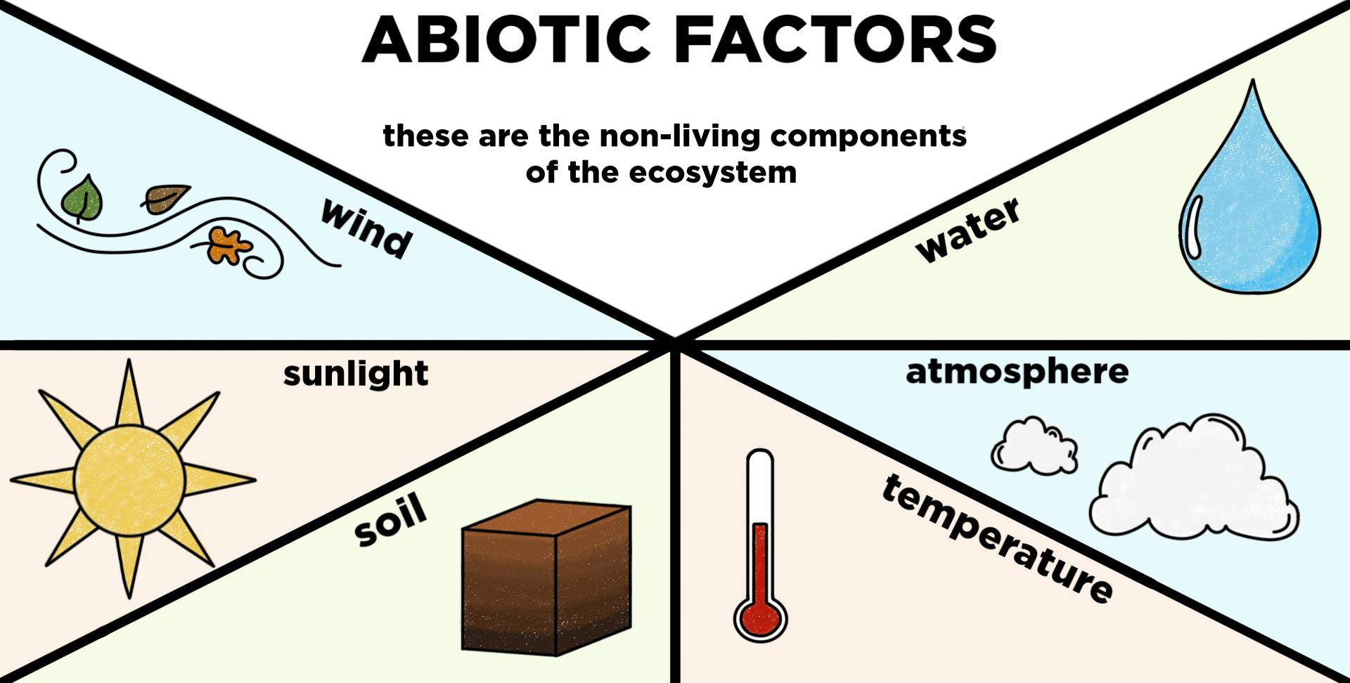 Abiotic Components Of Ecosystems