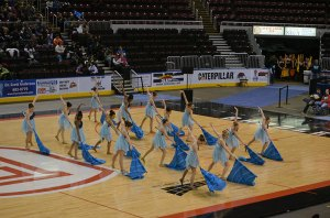 The Vikettes perform during the state championship.