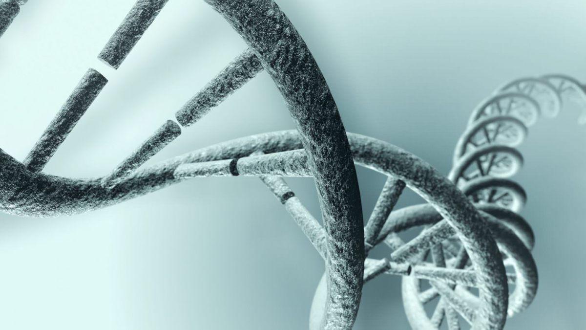 Epigenetics Has Become Dangerously Fashionable