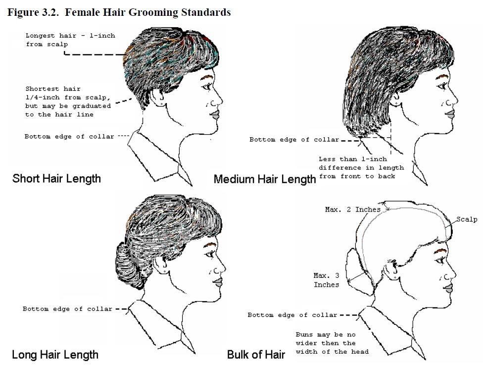 Army Regulation 670 1 Female Hair Color Lajoshrich