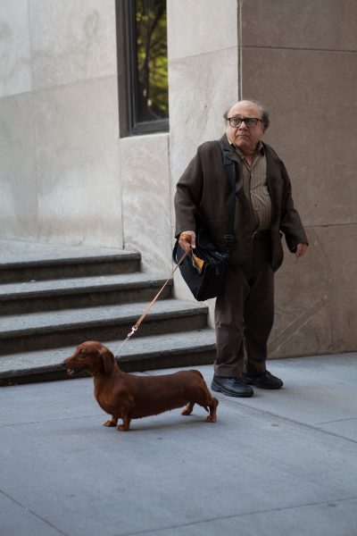 "Danny DeVito in the film ""Wiener-Dog."" (Courtesy IFC Films)"