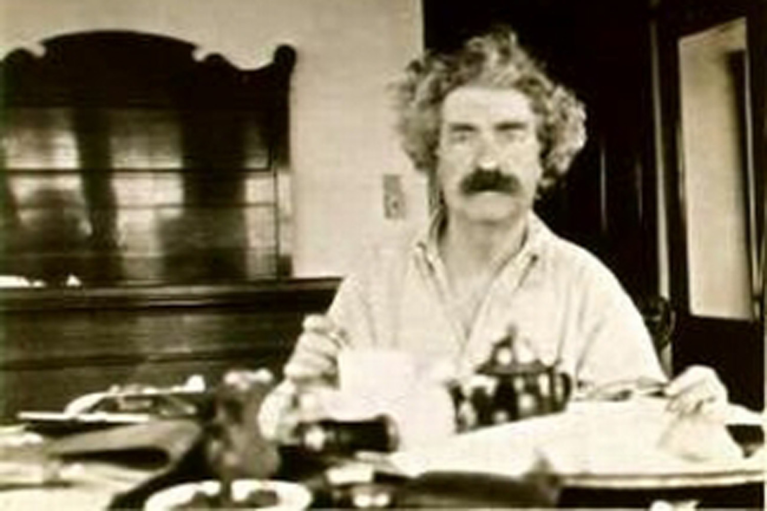 Image result for images of mark twain