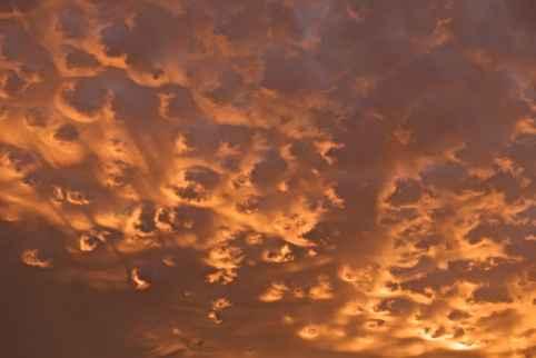 史蒂芬·英格拉姆(Stephen Ingram)在加利福尼亞的歐文斯山谷發現了高積雲,並發表在雲鑑賞協會的《一天的雲》中。 (斯蒂芬·英格拉姆)