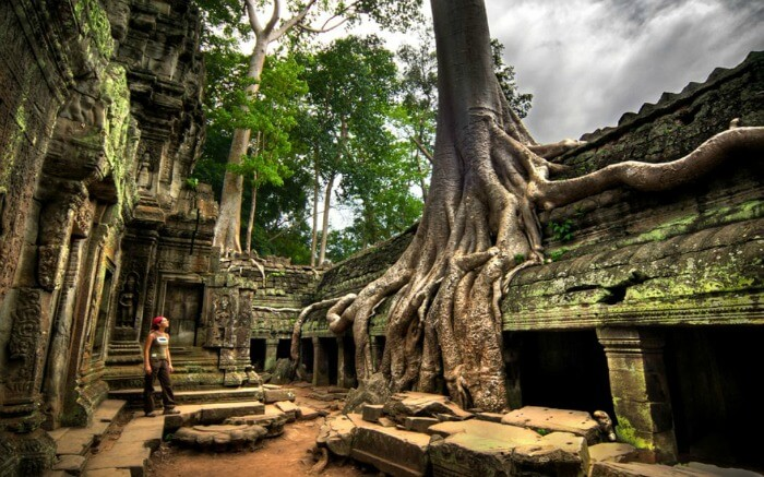 Visit one of Cambodia's greatest tourist attractions: Ta Prohm