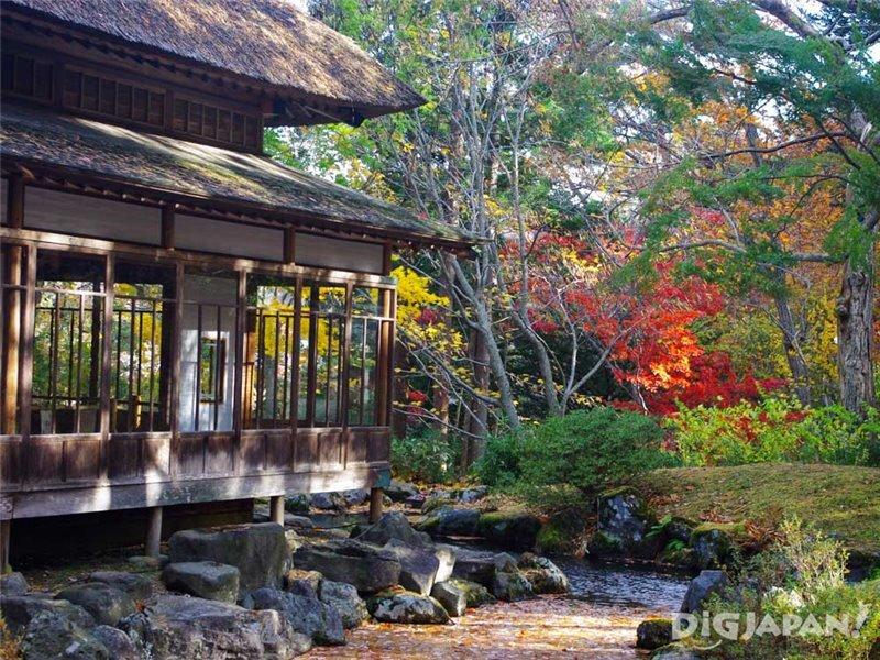 去看日本最早的紅葉吧!北海道的楓葉・銀杏景點推薦 | DiGJAPAN!