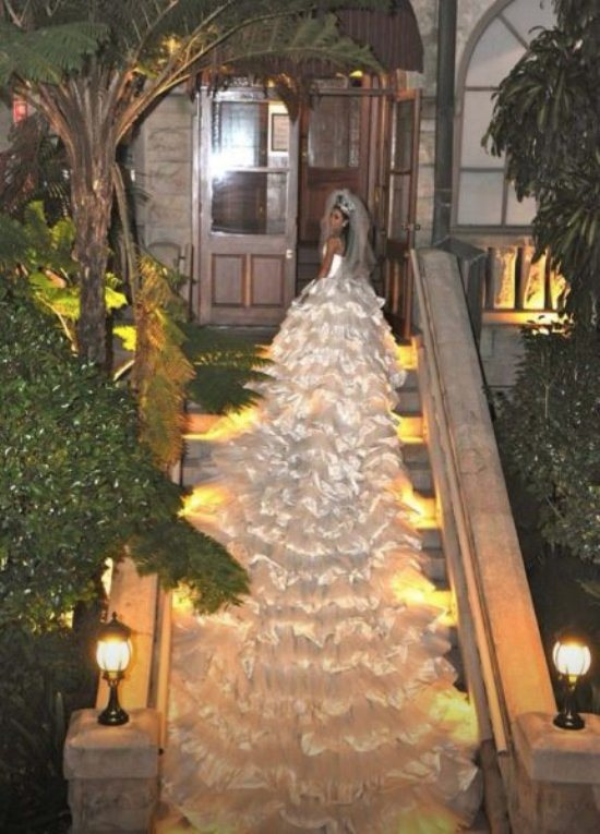 Longest Wedding Dress Train Ever Looks Like A White