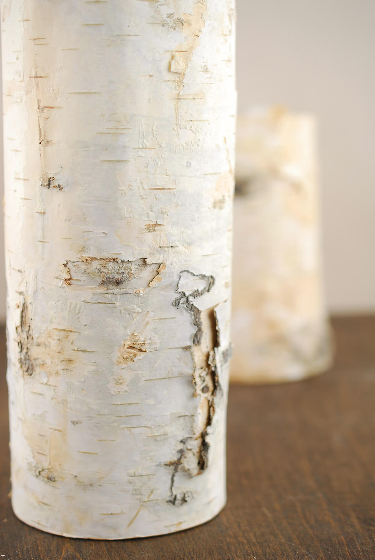 10 Natural Birch Tree Branch Candle Holders